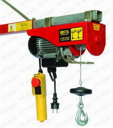 ELECTRIC HOIST-WT-100,200